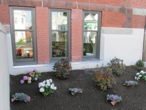 New plants set off the front of the building.